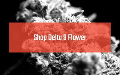 shop delta 8 flower
